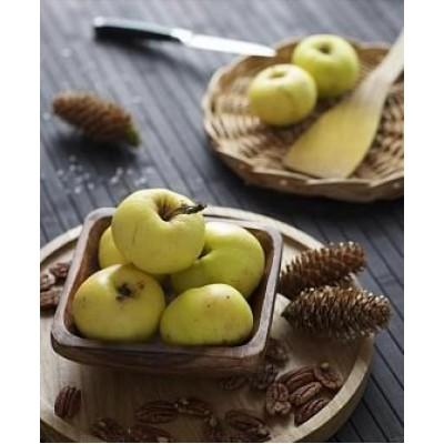 """Саженец яблони  """"Донешта"""""""